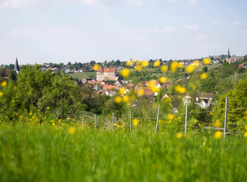 Blick über Talheim