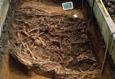 Knochenfunde im Massengrab