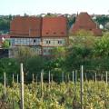 Talheimer Burg